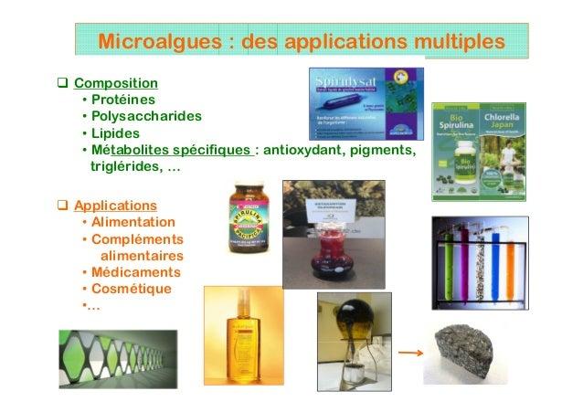 2 Microalgues : des applications multiples Composition • Protéines • Polysaccharides • Lipides • Métabolites spécifiques :...