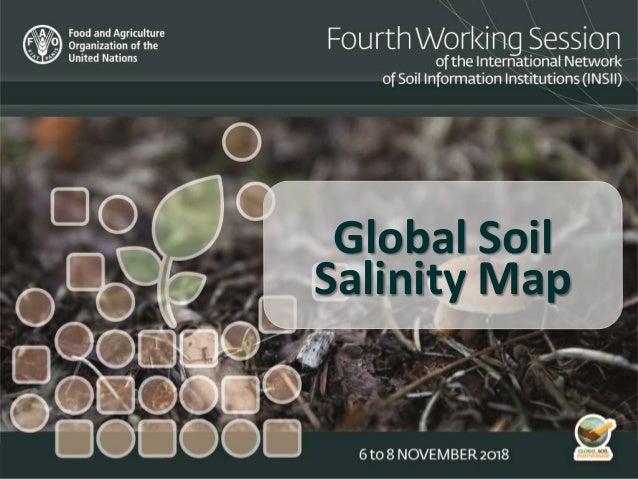 Global Soil Salinity Map