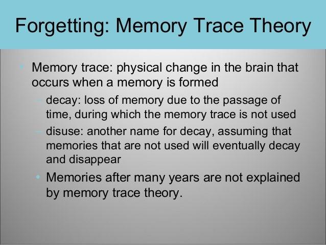 Memory essay conclusion