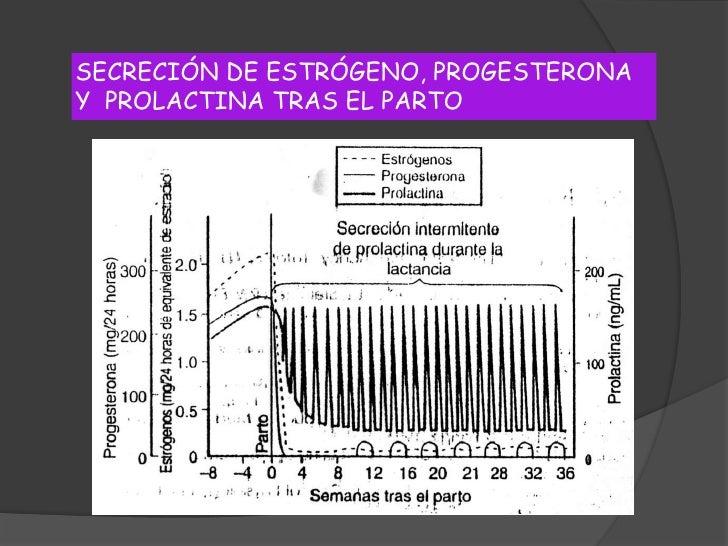 Fisiología de la Lactancia<br />Desarrollo Mamario – Regulación hormonal<br />Gestación:  MAMOGÉNESIS<br />Progesterona<br...