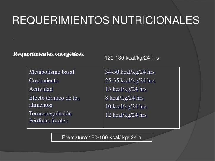 — Periodo transicional. De 7 m a un año.  Inicia la diversificación alimentaria<br />- Periodo de adulto modificado. Prees...