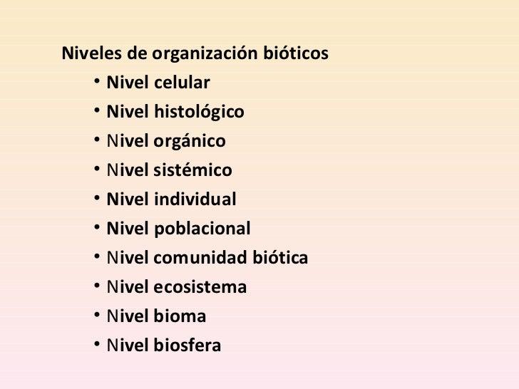 8 niveles organizacion for Organizacion de un vivero