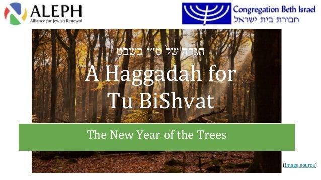 הגדהשלט׳׳ובשבט A Haggadah for Tu BiShvat The New Year of the Trees (image source)