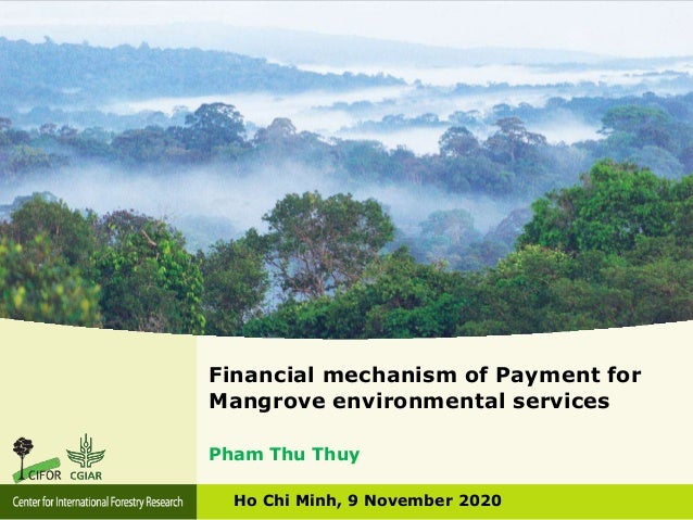 Financial mechanism of Payment for Mangrove environmental services Ho Chi Minh, 9 November 2020 Pham Thu Thuy