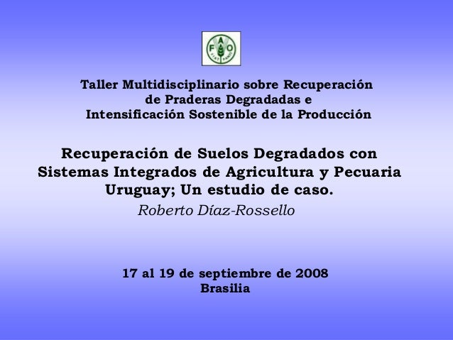 Taller Multidisciplinario sobre Recuperación de Praderas Degradadas e Intensificación Sostenible de la Producción Recupera...