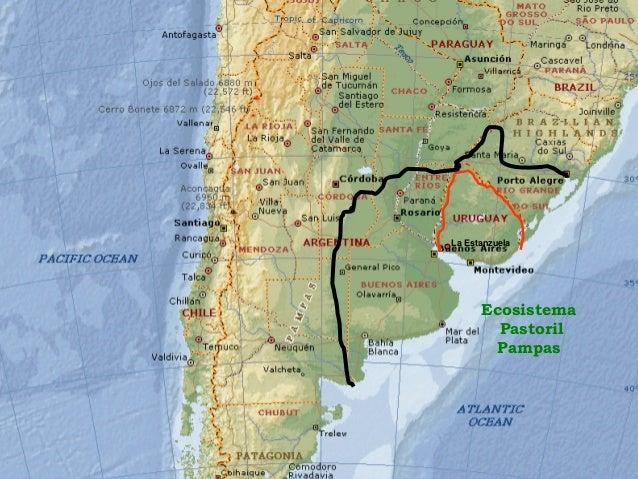 Recuperación de suelos degradados con sistemas integrados de agricultura y pecuaria Uruguay; Un estudio de caso Slide 3