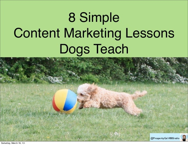 8 Simple           Content Marketing Lessons                  Dogs Teach                                @ProsperityGal #BB...