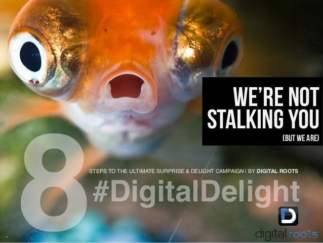 STEPS TO THE ULTIMATE SURPRISE & DELIGHT CAMPAIGN | BY DIGITAL ROOTS! 8! We're not stalking you(But we are) #DigitalDeligh...