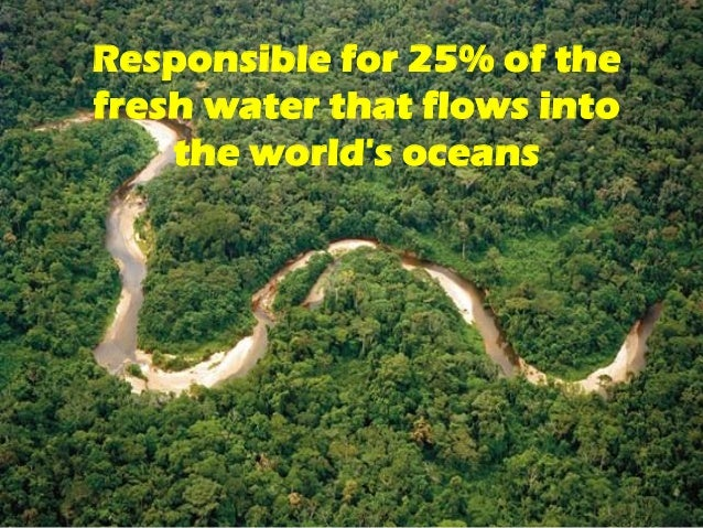 8 facts on amazon river