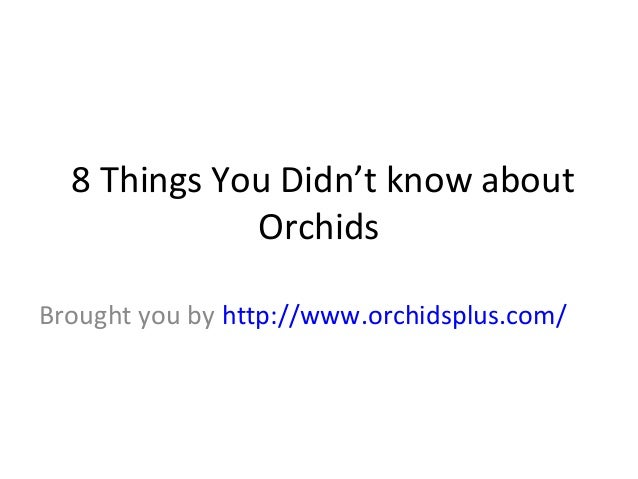 8 Things You Didn't know about Orchids Brought you by http://www.orchidsplus.com/