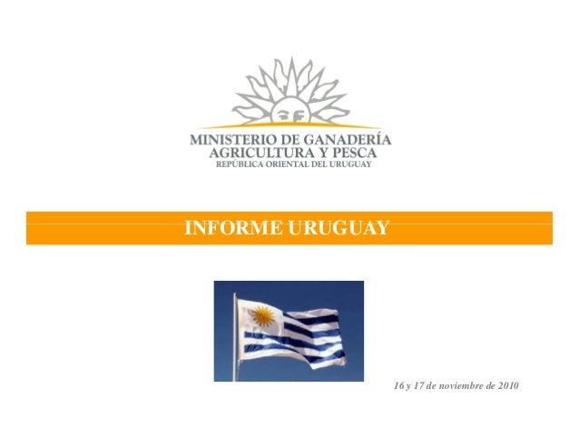 INFORME URUGUAY 16 y 17 de noviembre de 2010 INFORME URUGUAY