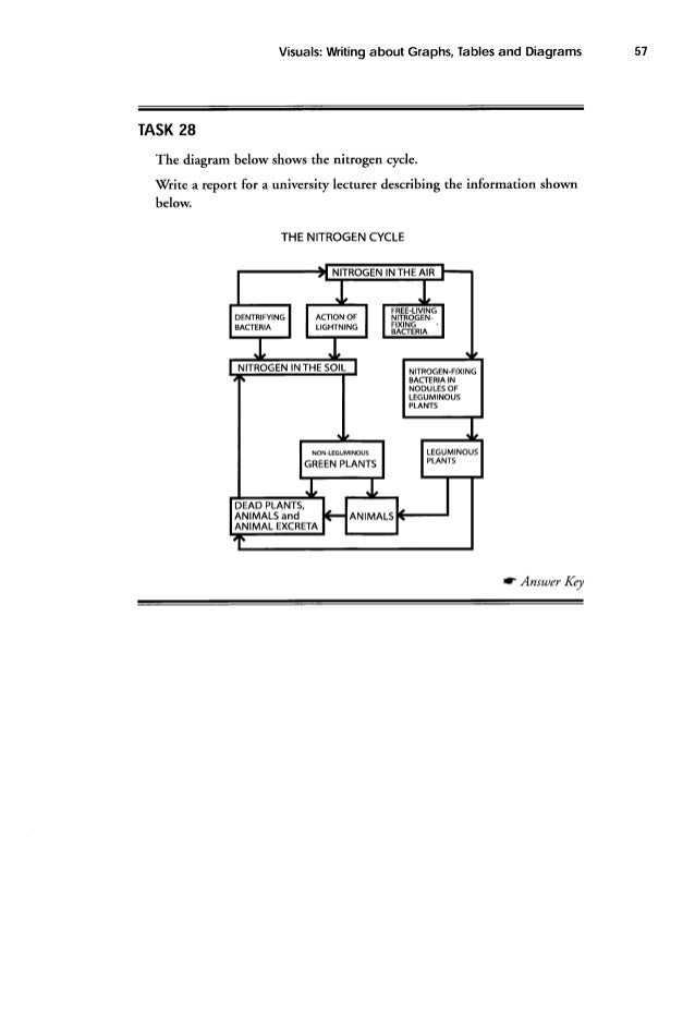 Academic Writing Sample Task 1 #51
