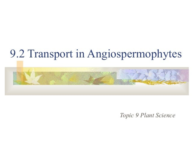 9.2 Transport in Angiospermophytes Topic 9 Plant Science