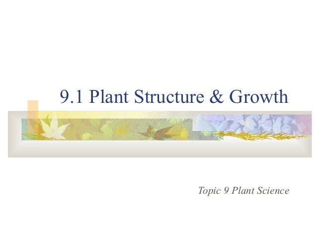 9.1 Plant Structure & Growth Topic 9 Plant Science