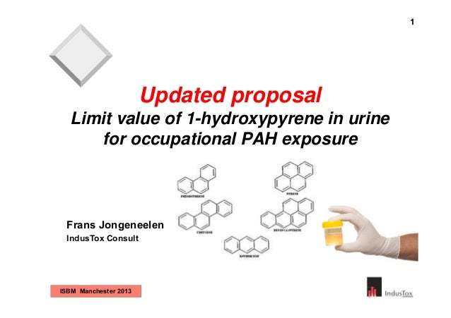 1  Updated proposal Limit value of 1-hydroxypyrene in urine for occupational PAH exposure  Frans Jongeneelen IndusTox Cons...