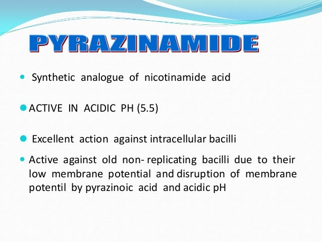 acid sysnthesis Protein synthesis 1 : protein synthesis 2 : quiz: protein synthesis 1  your choice of amino acid is now constrained to the area in the shared region of column 1.