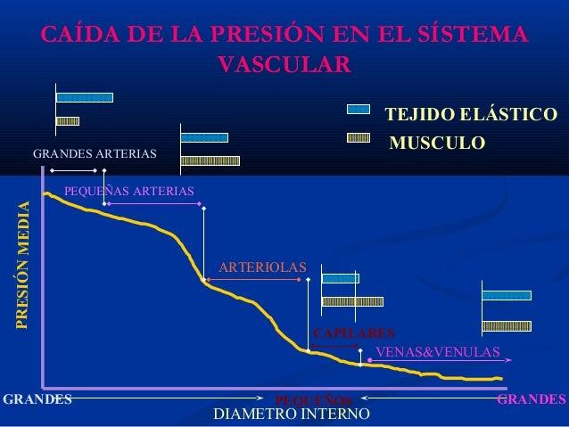 9. presion arterial
