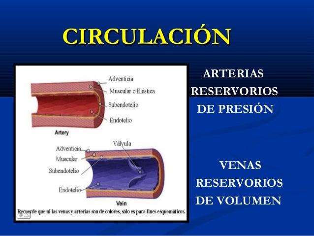 Cómo hipertensión intracraneal En menos de tres minutos usando estas asombrosas herramientas