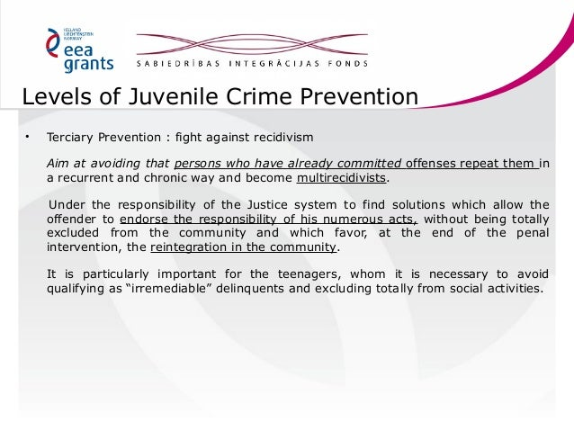 juvenile crime prevention 19 levels of juvenile crime