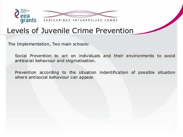 juvenile crime prevention 20 levels of juvenile crime
