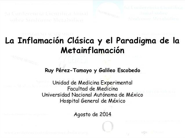 La Inflamación Clásica y el Paradigma de la  Metainflamación  Ruy Pérez-Tamayo y Galileo Escobedo  Unidad de Medicina Expe...