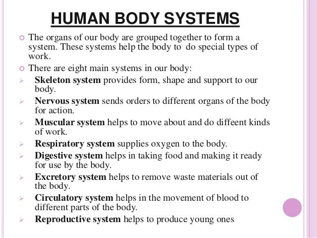Body Systems & How They Work Together   Livestrong.com