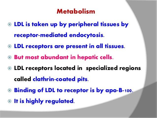 LDL & HDL METABOLISM