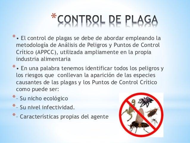 Las plagas y su control for Control de plagas tenerife