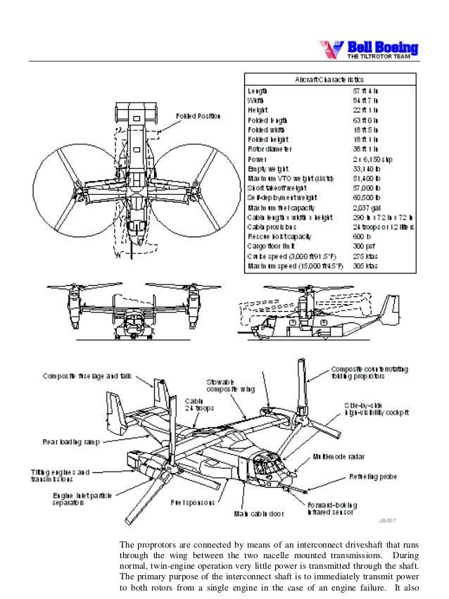 an early document about the osprey rh slideshare net Osprey Outline Osprey Bird