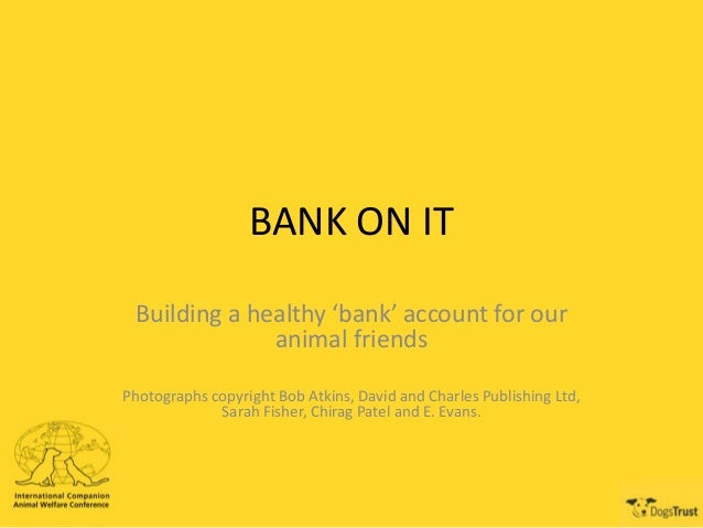 BANK ON IT Building a healthy 'bank' account for our animal friends Photographs copyright Bob Atkins, David and Charles Pu...