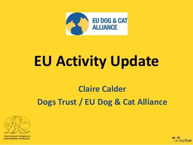EU Activity Update Claire Calder Dogs Trust / EU Dog & Cat Alliance