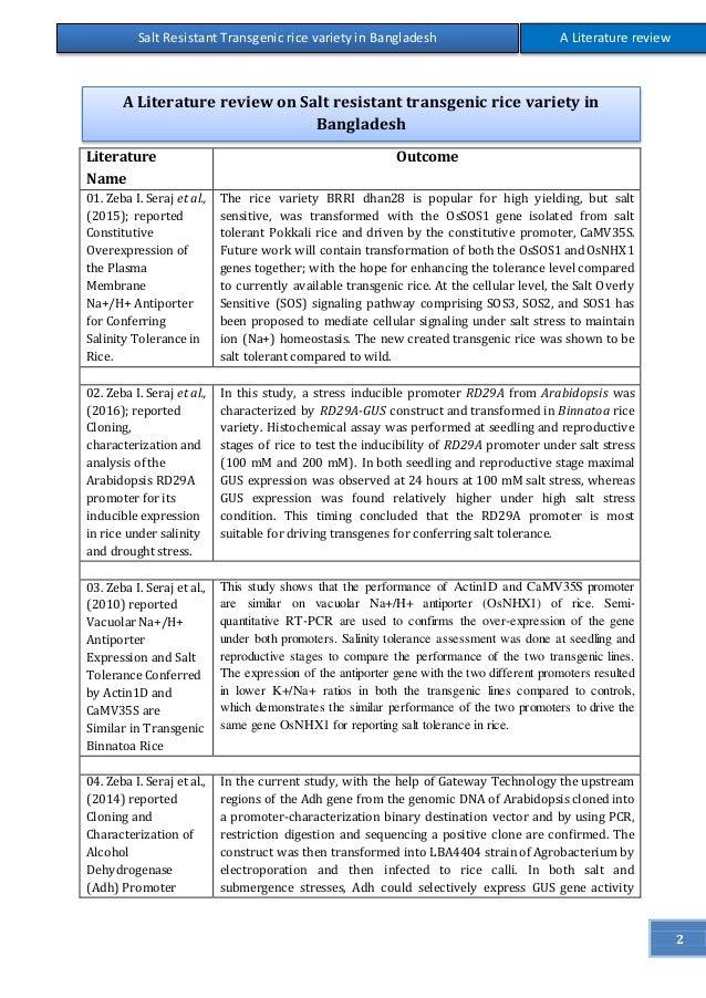literature review on rice destoner