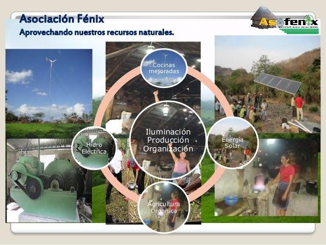 Asociación Fénix Aprovechando nuestros recursos naturales. Iluminación Producción Organización Cocinas mejoradas Energía S...