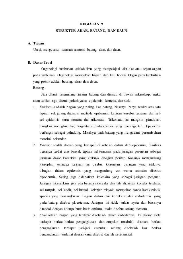 Contoh Laporan Praktikum Jaringan Xilem