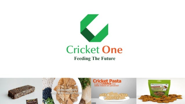 www.cricketone.asiawww.cricketone.asia PROBLEM POPULATION KEEPS INCREASING NO GROWTH ROOM PROTEIN SHORTAGE FROM 2025