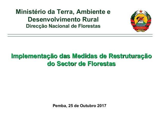 Pemba, 25 de Outubro 2017 Ministério da Terra, Ambiente e Desenvolvimento Rural Direcção Nacional de Florestas Implementaç...