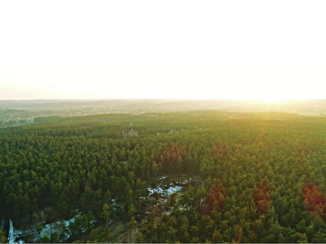 How to communicate environmental friendly forest management in Sweden