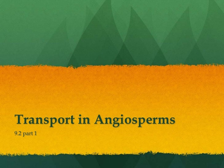 Transport in Angiosperms9.2 part 1