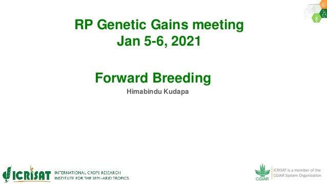 RP Genetic Gains meeting Jan 5-6, 2021 Himabindu Kudapa Forward Breeding