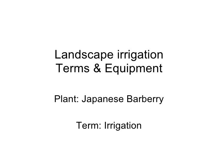 Landscape irrigation Terms & Equipment Plant: Japanese Barberry Term: Irrigation