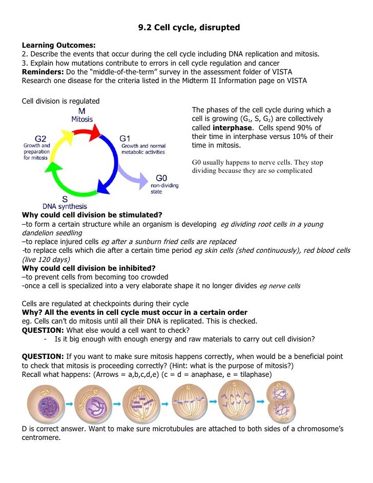 9.2 Cell cycle, disrupted  Learning Outcomes: 2. Describe the events that occur during the cell cycle including DNA replic...