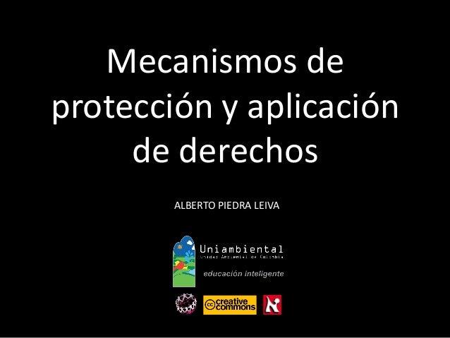 Mecanismos de  protección y aplicación  de derechos  ALBERTO PIEDRA LEIVA