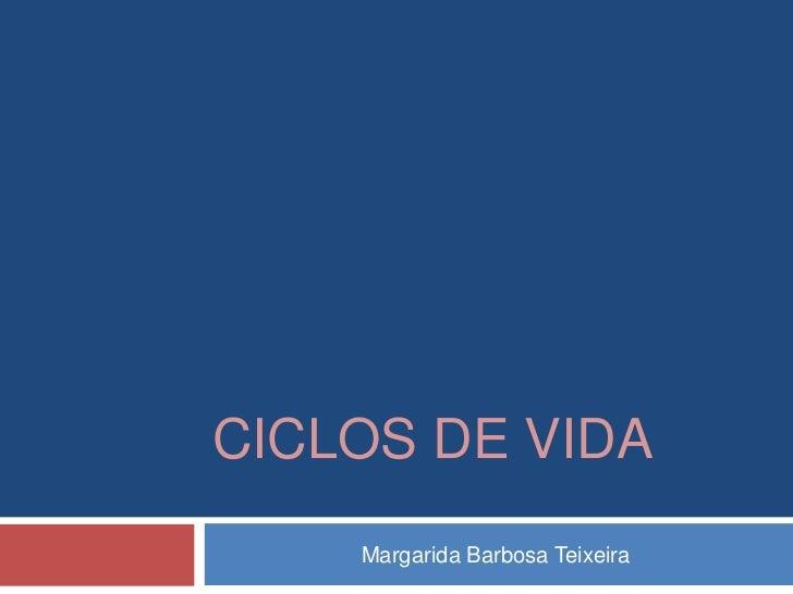 CICLOS DE VIDA    Margarida Barbosa Teixeira