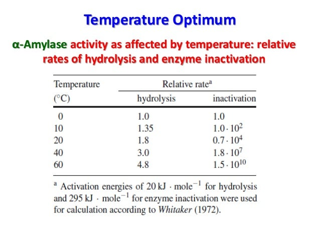 the effect of temperature and ph on amylase enzyme activity Investigate the effect of temperature on amylase activity 1 investigate the effect of temperature on amylase activityintroduction amylase is an enzyme that catalyses the breakdown of starch.