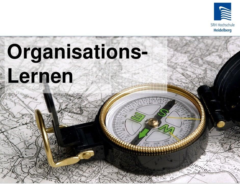 Organisations- Lernen