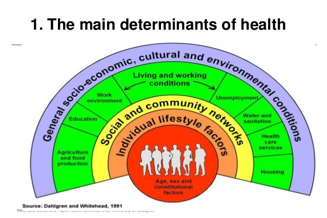 determinants of health and their effect on health policy The goal of the conference was to increase awareness among mental health care professionals about the many ways in which determinants such as housing quality, neighborhood safety and fair employment, as well as the distribution of political, civil, economic and other rights, impact mental health outcomes.