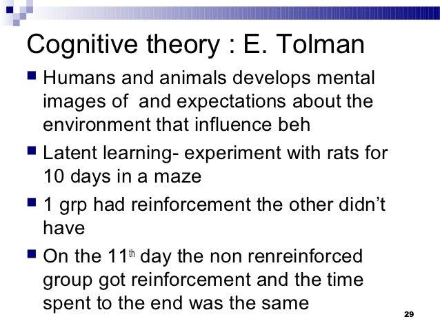 tolman psychology