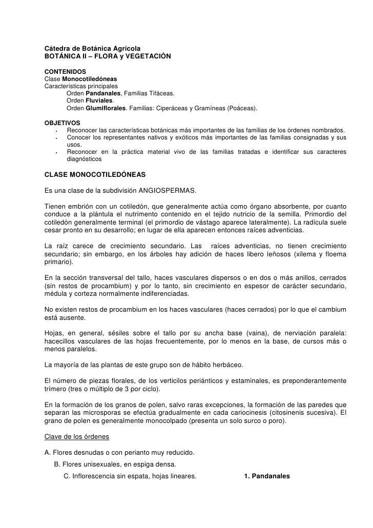Cátedra de Botánica Agrícola BOTÁNICA II – FLORA y VEGETACIÓN  CONTENIDOS Clase Monocotiledóneas Características principal...