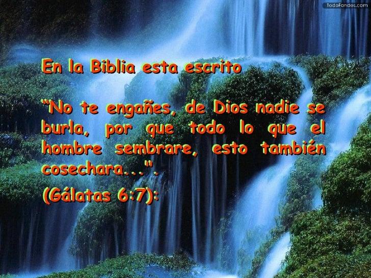 """En la Biblia esta escrito """" No te engañes, de Dios nadie se burla, por que todo lo que el hombre sembrare, esto también co..."""