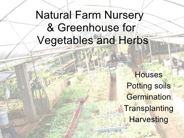Natural Farm Nursery  & Greenhouse for  Vegetables and Herbs Houses Potting soils Germination Transplanting Harvesting